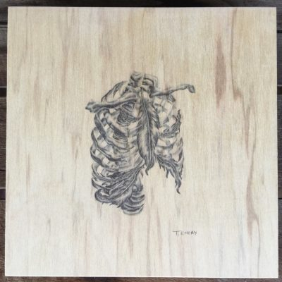Ribs plywood illustration