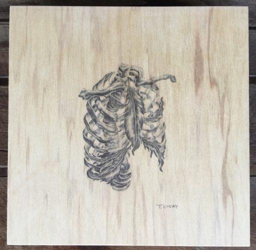 Ribs plywood illustration