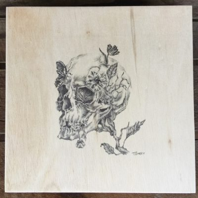 Skull plywood illustration
