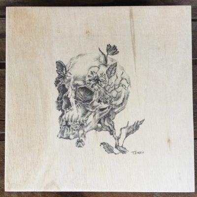 Skull plywood illustration