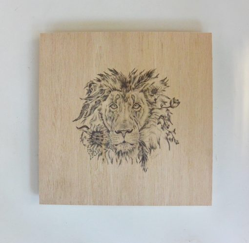 lion illustration